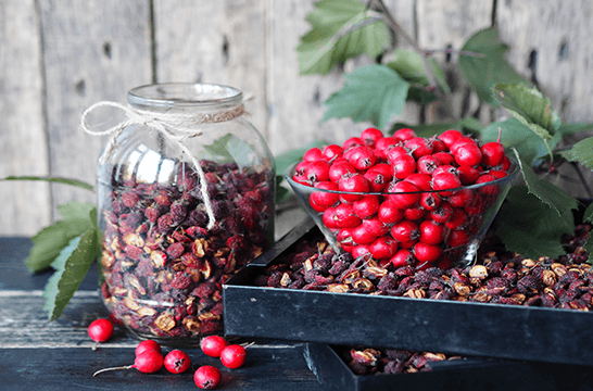 Hawthorn Berries Cider Tonic Apothecary