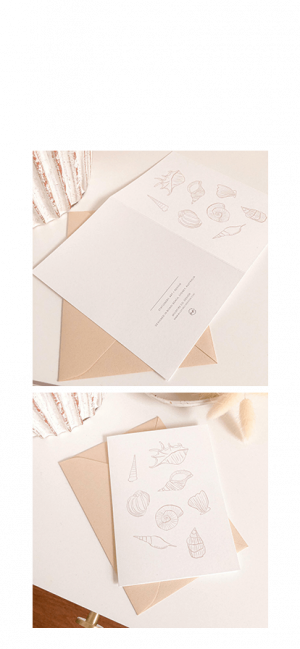 Seashells-Card-By-Wildfire-Co.-Design-Cider-Tonic